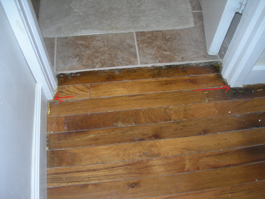 Threshold between hardwood floor and tiling into bathroom for Hardwood floors or carpet